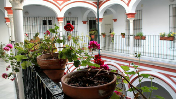 The most beautiful apartment in Seville