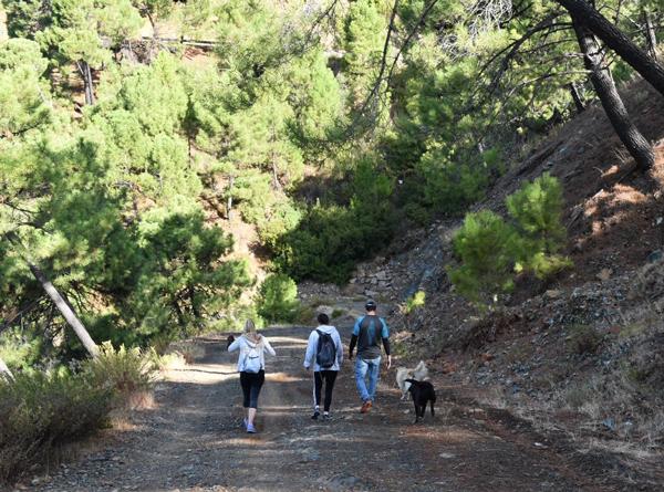 serranía de ronda with pets