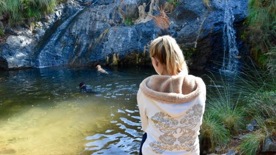 Pet-friendly getaway to the Serranía de Ronda